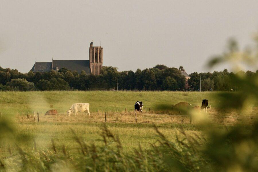 Elburg weilanden Het Verborgen Verblijf