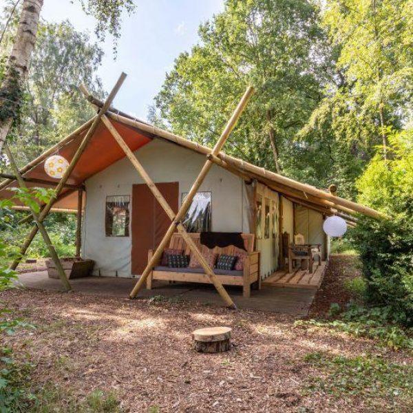 Camp Woodstock - Het Verborgen Verblijf